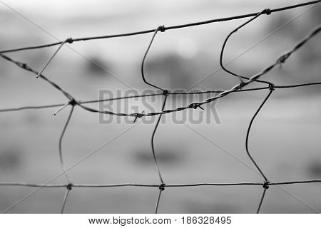 Close up of fence with barbed wire in black and white.