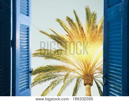 room with open blue window shutters to - palm tree in blue sky with sunshine, -vacation concept