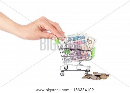 Polish Zloty In The Shopping Pushcart On Woman's Palm, Isolated On White