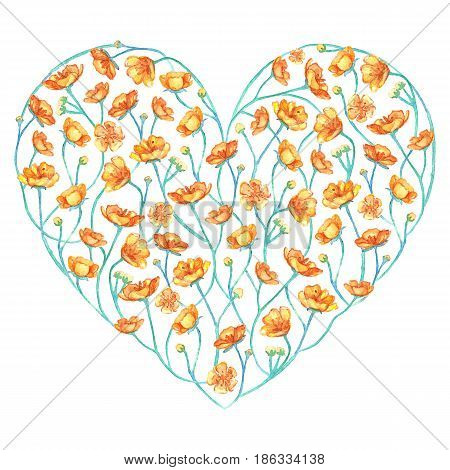 Watercolor yellow buttercup flower floral heart isolated
