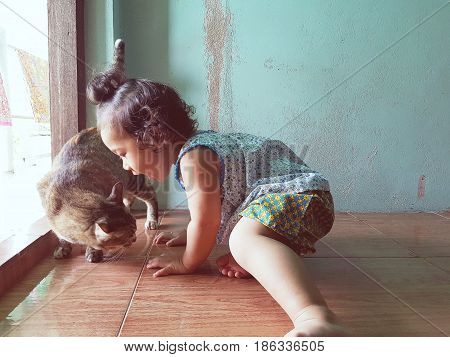 The little girl threatens the cat,Funny little child playing with white cat,Concept photo animals and children.