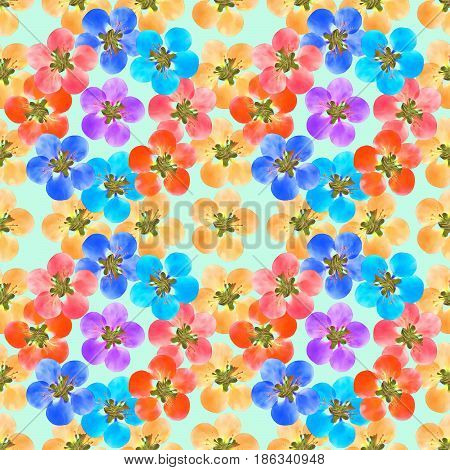 Quince apple quince. Texture of flowers. Seamless pattern for continuous replicate. Floral background photo collage for production of textile cotton fabric. For use in wallpaper covers.