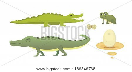 Crocodile Cute Character set. Aligator vector cartoon isolated illustration