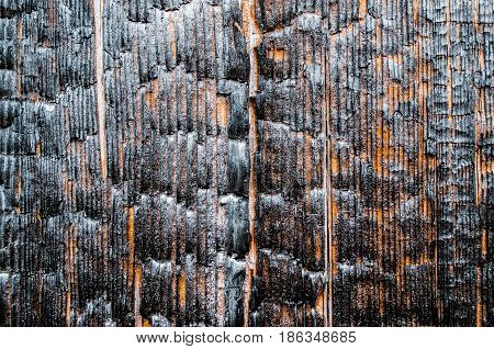 Burnt Wood Texture Near, Close-up, Bare Wood.