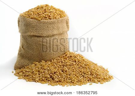 Bag With Wheat (Photo taken on white background)
