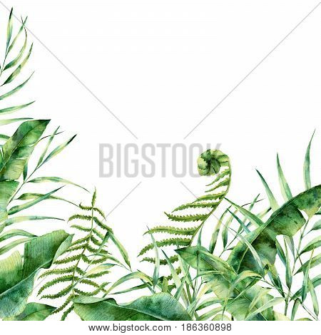 Watercolor exotic floral border. Hand painted tropic frame with palm tree leaves, fern branch, banana and magnolia leaves isolated on white background. For wedding and greeting design or print