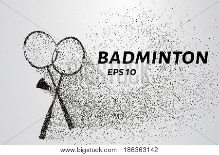 Badminton Of Particles. Badminton Consists Of Small Circles And Dots. Vector Illustration.