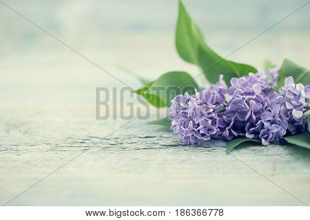 Bouquet Of Flowers Lilac On Turquoise Rustic Table. Greeting Card For Valentine's Day, Woman's Day A