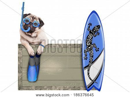 funny pug dog with blue vintage wooden beach sign with goggles snorke surfboardl and flippers for summer isolated on white background