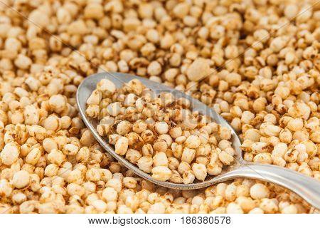 Spoonful of puffed quinoa seeds (Chenopodium quinoa)