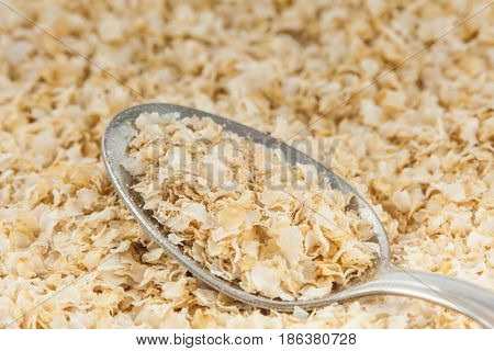 A spoonful of quinoa flakes (Chenopodium quinoa)