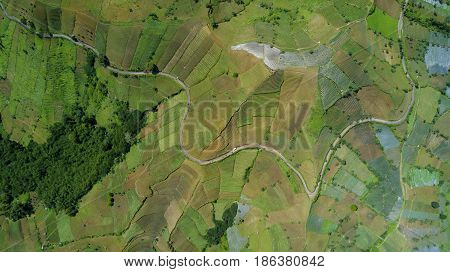 Beautiful aerial view of farmland hill landscape with terraced system and road in Majalengka West Java Indonesia