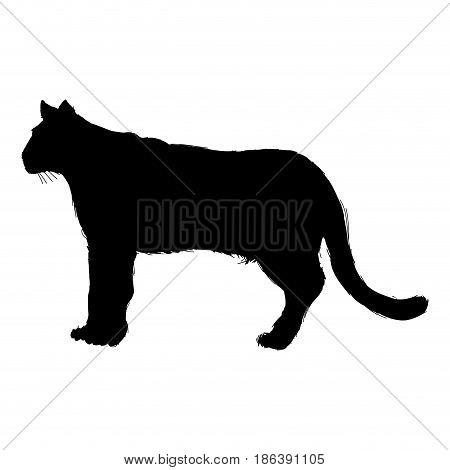 pictogram cougar or mountain lion. portrait animal wildlife vector illustration