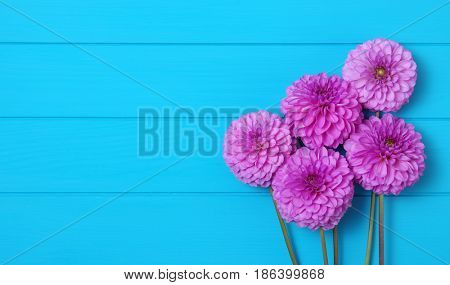 Flowers on blue painted wooden planks. Place for text.