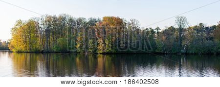 Panoramic image of a Great blue heron rookery  across from Rookery View Park in Wausau, Wisconsin
