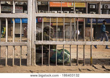 Homeless Man House