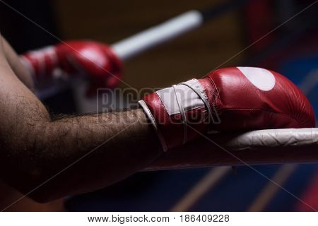 muscular professional kick boxer resting on the ropes in the corner of the ring while training for the next match with a focus on the gloves