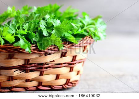 Fresh parsley leaves in a basket. Dietary source of antioxidants, folic acid, vitamin K, vitamin C and vitamin A. Parsley on vintage wooden background with copy space for text. Rustic style. Closeup