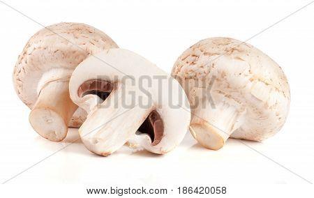 Fresh champignon mushrooms isolated on white background.