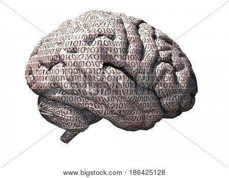 Binary brain   3D rendering