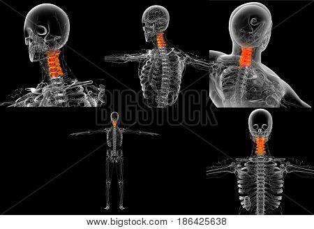 3D Rendering Medical Illustration Of The Neck Bone