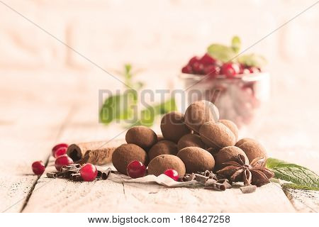 Homemade healthy vegan chocolate truffles with cranberry on paper over white wooden background