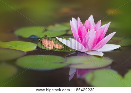 Newborn baby in frog outfit sleeping on a waterlily leaf