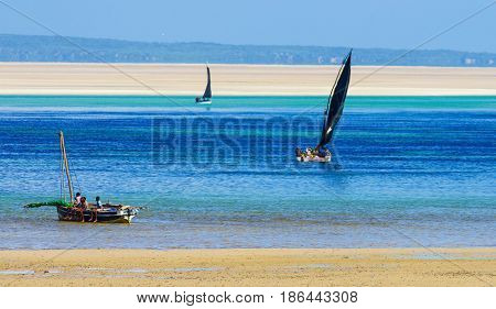 Fisherman working near coast of Mozambique with low tide
