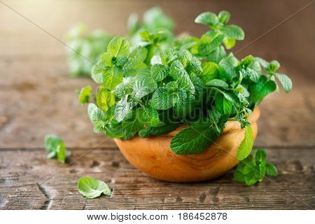 Mint. Bunch of Fresh green organic mint leaf on wooden table closeup. Selective focus. Peppermint in a bowl on natural wooden background