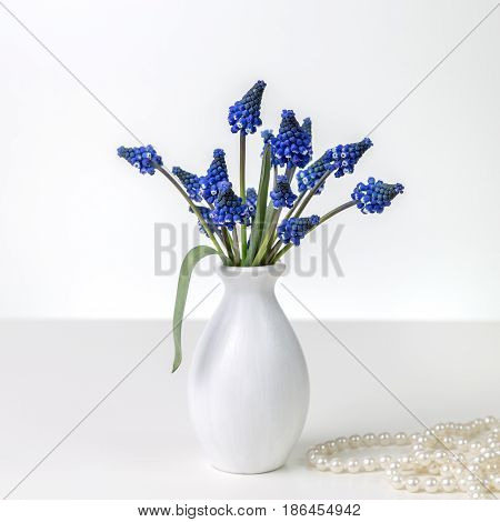 Bouquet of hyacinths in a white vase and pearl necklace on a white background. Space for text.