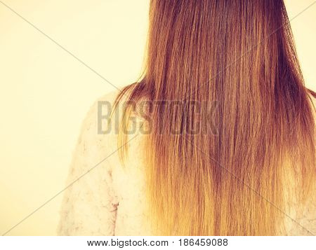 Back View Of Long Brown Straight Hair