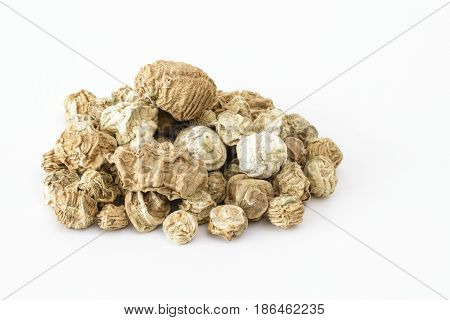 Dried Kachri or wild melon (Cucumis pubescens) on a white background