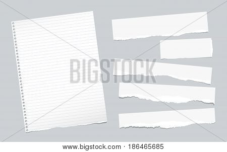 Ripped note, notebook, copybook paper sheets, strips, stuck on gray background