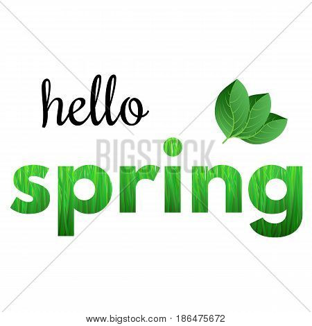 Colorful phrase Hello Spring from grass and with green leaves.