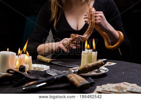 The Serpent Tempter Helps A Witch To Do The Blood Rituals Of Black Magic