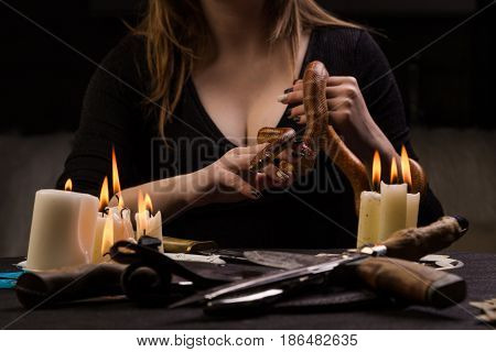 The Fortune Teller Performs A Ritual To Love Using Snake