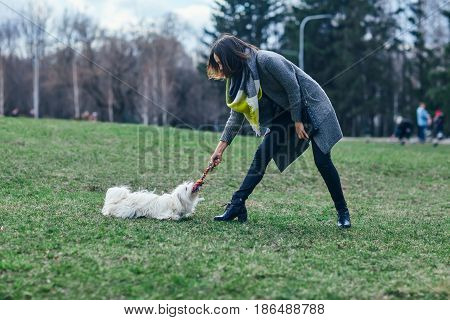 Young Beautiful Girl Playing With Her Dog On Grass