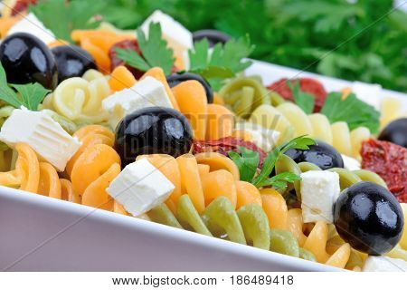 Colorful pasta with vegetable in a plate close-up