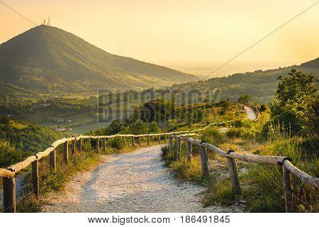 Euganean Hills yellow sunset Pianoro del Mottolone trail Padua Italy Veneto region