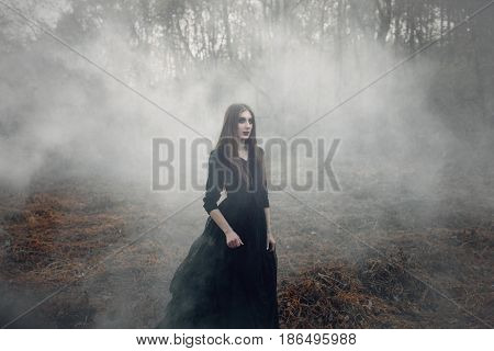 Young attractive Witch in black dress walking on the old field in heavy black smoke. Dark magic. Horror fairy tale.