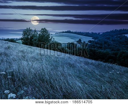 agricultural hay field in mountains. trees on the grassy meadow. beautiful countryside landscape at night infull moon light