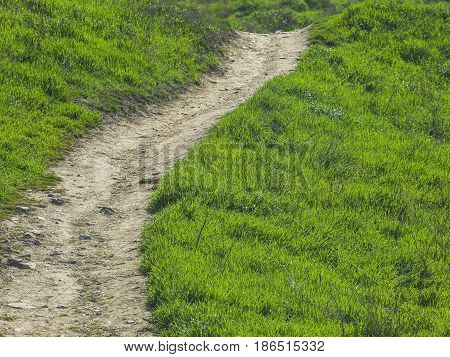 A long path among the green mountains