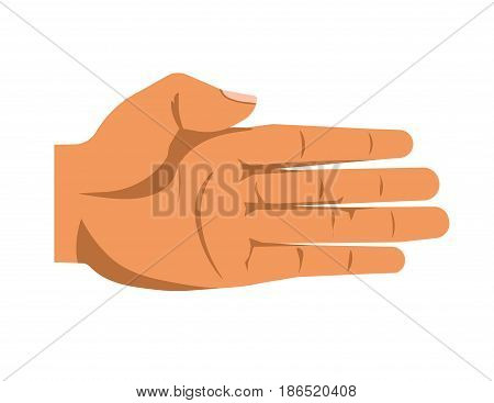 Open human palm isolated on white vector colorful illustration in flat design. Male or female arm that is ready to help somebody or to receive something. Hand gesturing template