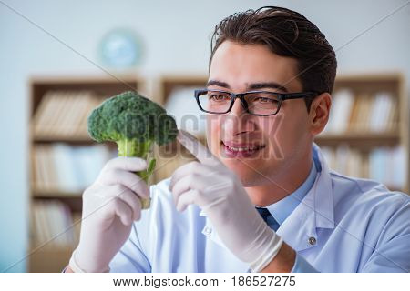 Scientist working on organic fruits and vegetables