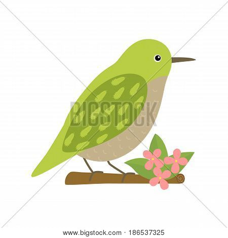 Uguisu bird animal cartoon character isolated on white background. Beautiful bright green bird on branch with flowers. Vector illustration