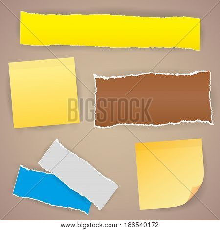 Pieces of different size ripped note notebook copybook sheets stuck with sticky tape on background