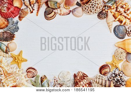 Background of wooden rude textured table with a frame of sea shells conches and starfish