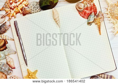 Opened blank checkered notebook with a pen in horizontal top view surrounded with different colored sea shells and starfish