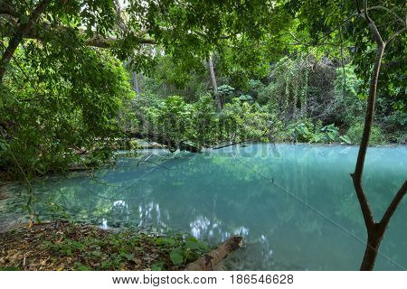 Pristine turquoise blue water in quiet pool surrounded by dense jungle vegetation above La Conchuda waterfall in Rio la Venta Canyon in Chiapas Mexico