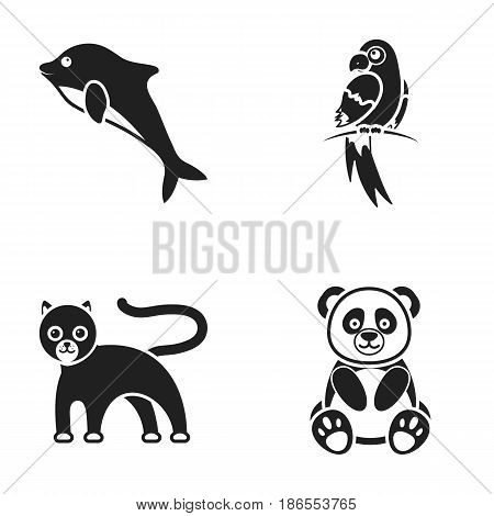 Panda.popugay, panther, dolphin.Animal set collection icons in black style vector symbol stock illustration .